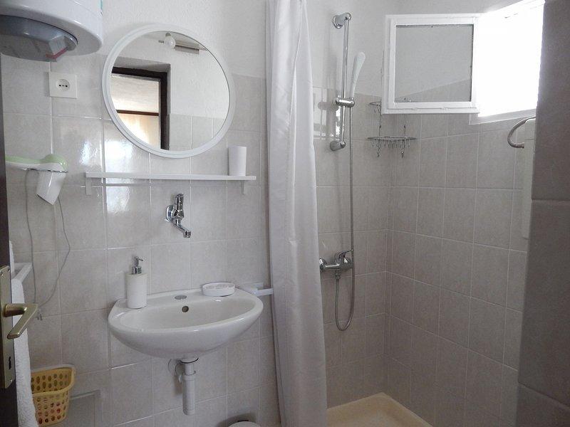 A1 donji(3+2): bathroom with toilet