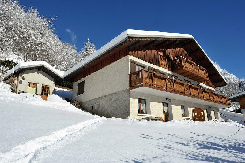 Amazing apt - 40 m from the slopes Chalet in Champagny