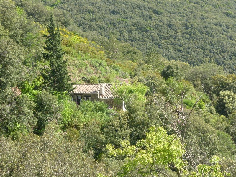 Bergerie Les Fons, holiday home in 'the middle of nowhere', holiday rental in Vieussan