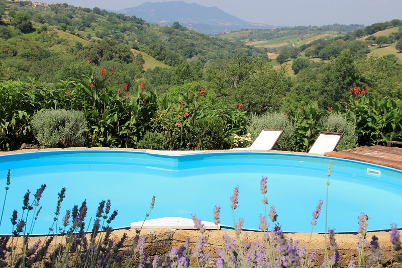 Country House Catino in Sabina vicino Roma, holiday rental in Poggio Catino