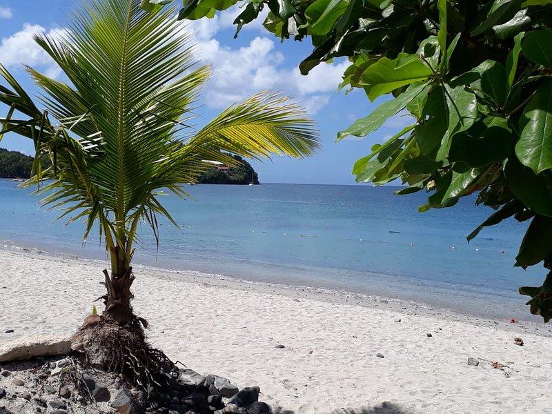Vacker strand Anse Mitan 5 minuters promenad från Canelia