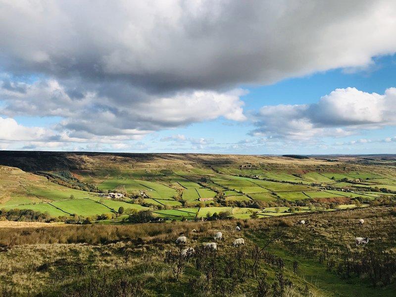 Les North Yorkshire Moors sont à une courte distance en voiture