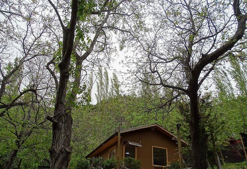 Cabaña Los Nogales en Cajón del Maipo, holiday rental in San Jose de Maipo