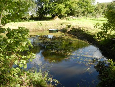 One of the large pond.  We are stocking with fish.