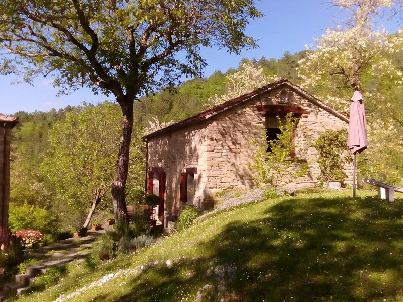 Porcaticcio, cozy cottage in the woods with pool (Bologna, Ravenna, Florence), vakantiewoning in Province of Ravenna