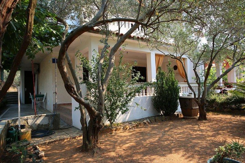 Ivo - relaxing & comfortable: A1(4+1) - Vrgada (Island Vrgada), holiday rental in Drage