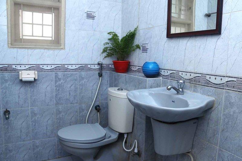 Salles de bains occidentales avec douche et eau courante chaude / froide