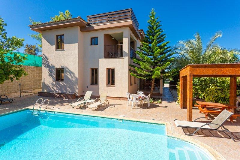 Villa Kinousa 2: Large Private Pool, Sea Views, A/C, WiFi, holiday rental in Steni