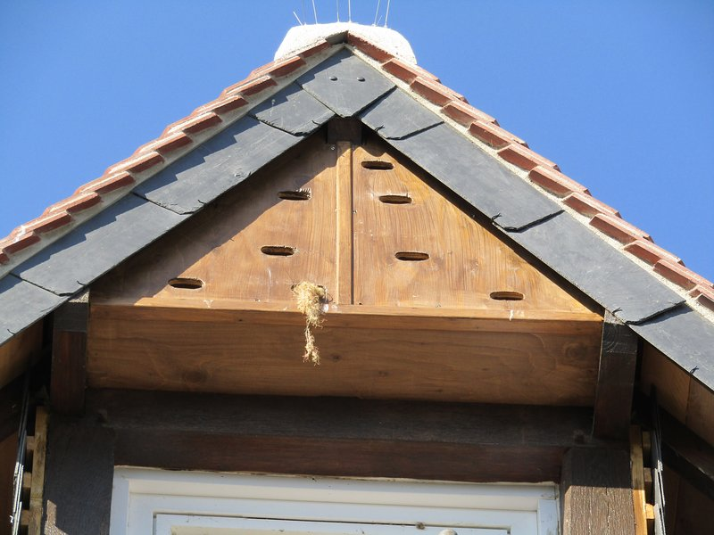 part of the nesting boxes of the house
