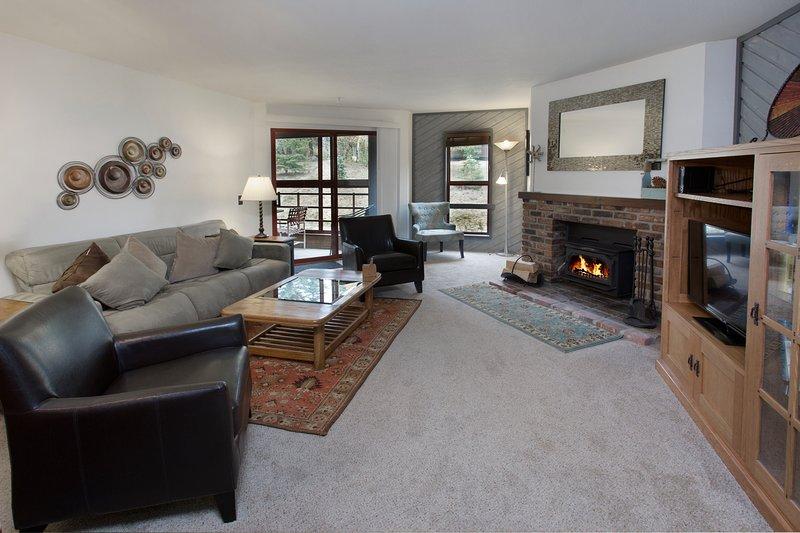 Coin salon avec cheminée à bois et télévision à écran LCD
