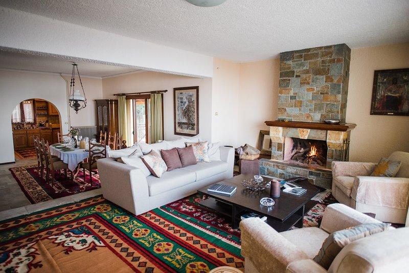 Il piano terra della casa con il soggiorno, la sala da pranzo e la cucina sullo sfondo
