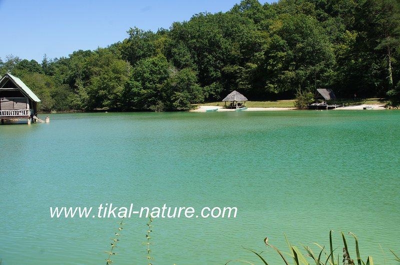 Tikal-Nature Le site complet, vacation rental in Saint-Martin-des-Combes