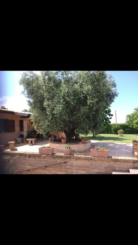 RosaVera, holiday rental in Cerveteri