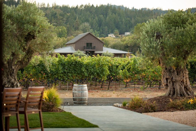 Stunning 6,600 square foot home set amidst the vineyards