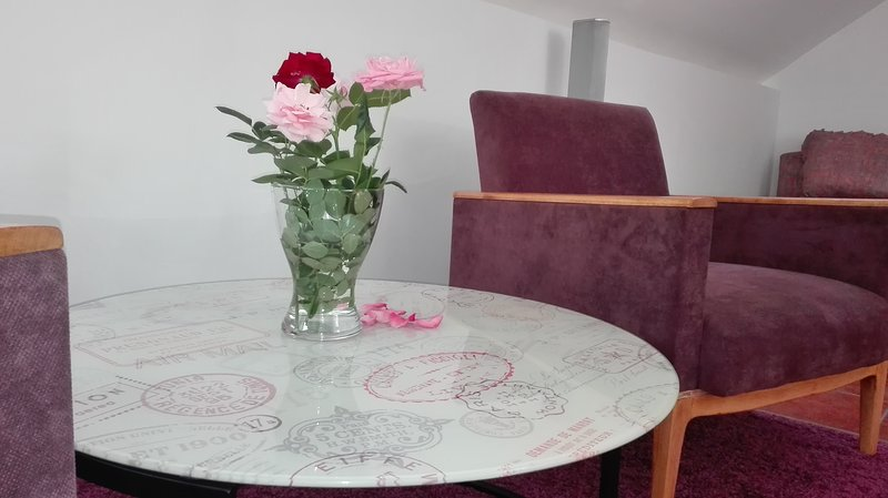 Apartment Dixy, holiday rental in Pancevo