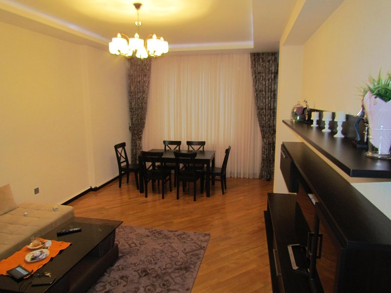 Luxurious apartment in Baku, holiday rental in Absheron Region