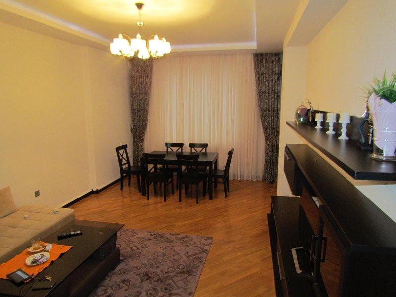 Luxurious apartment in Baku, holiday rental in Baku