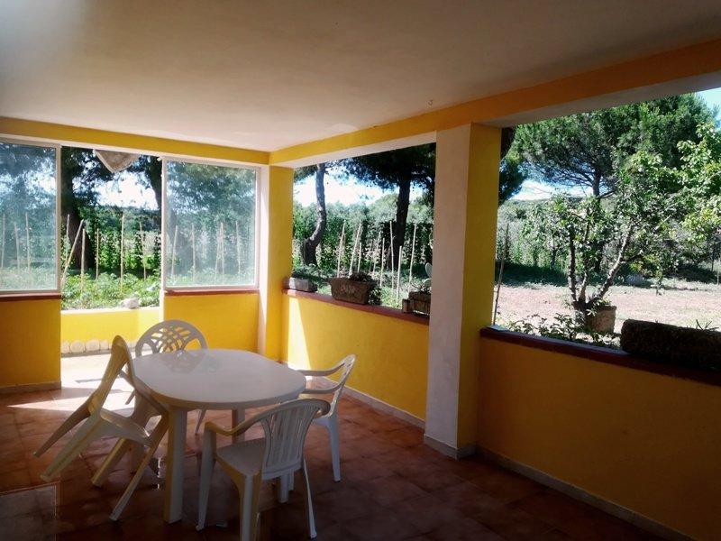 Nice house with garden & terrace, casa vacanza a Spiaggia Scialmarino