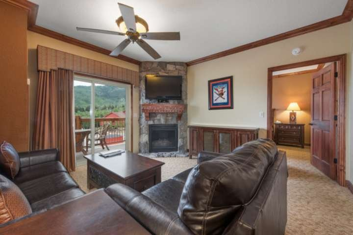 New Leather Couches (the larger a sleeper sofa), Private Patio, Gas Fireplace, Cable HDTV, Free Wi-Fi