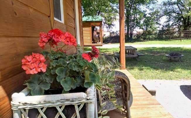 Kim's Cabins #2 - beautiful new, modern cabin sleeps 7, holiday rental in Tightwad