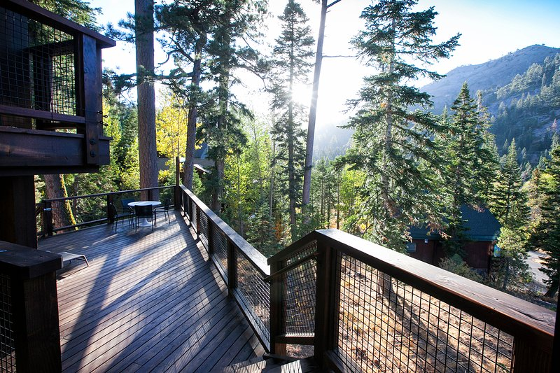 Trapper McNutt Modern Home | 4 BD, 4 BA w/ 3 master ensuites  t, Dry Sauna Chalet in Squaw Valley