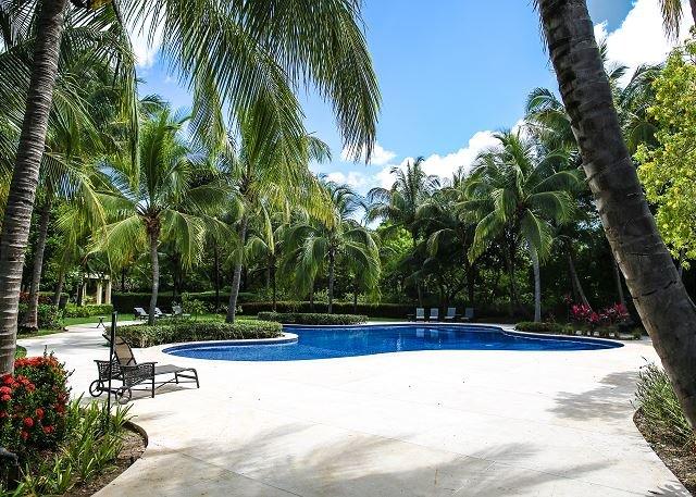 Jardines de Palma Real Shared Pool