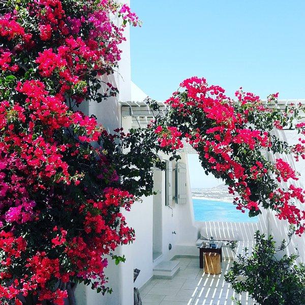 Villa Aggelos, holiday rental in Mikri Vigla