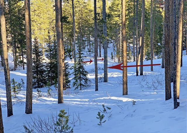 Semi-Private Ski Trail