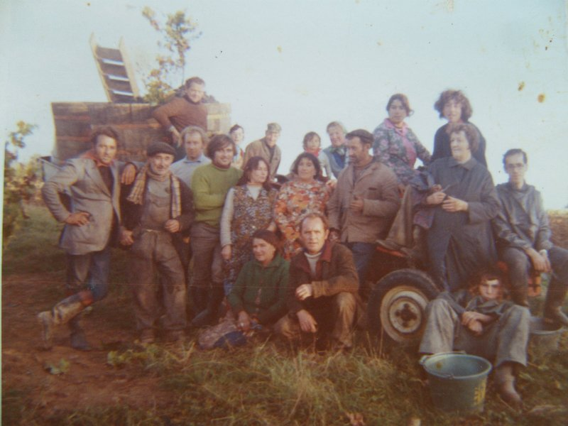 1972 Grape Harvest - the family Beaumont and friends