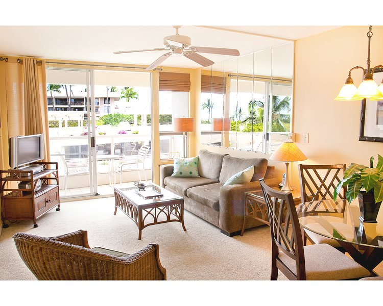 Living room has a full-length lanai and a queen-sized  pull-out sofa-bed