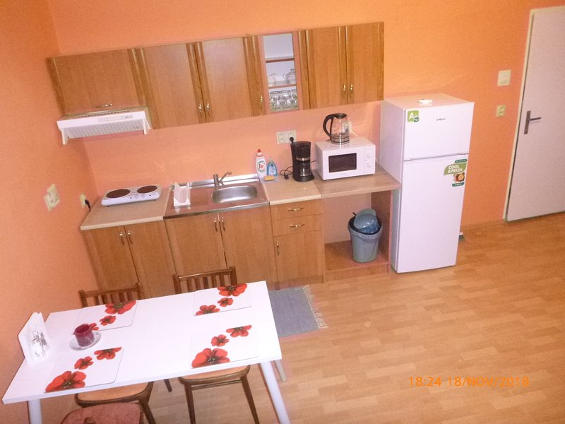 A kitchen is fully equipped with a microwave, electric kettle, Electric Stove (Cooktop), coffee/tea