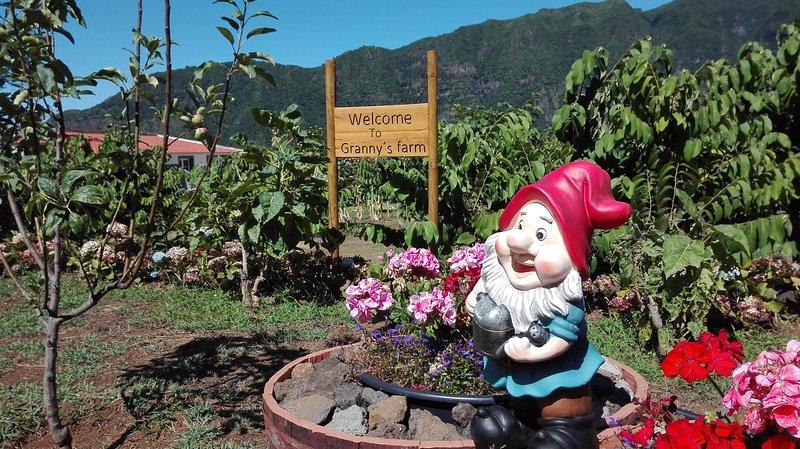 Granny´s farm holiday bungalow D, location de vacances à Sao Vicente