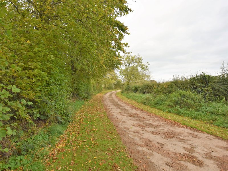 Peaceful lane leading down to the cottage