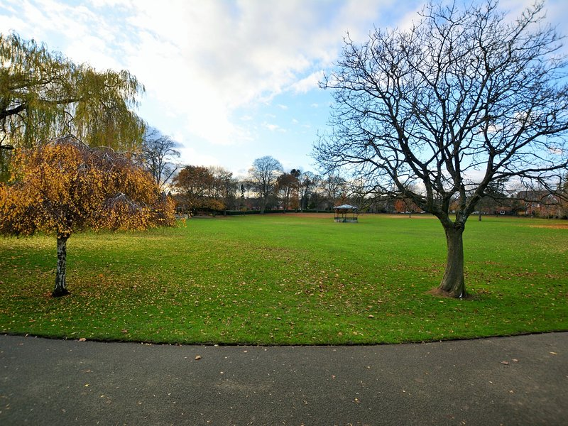 The local 7 acre park