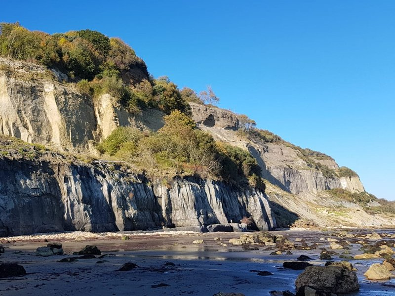 Nearby Luccombe beach
