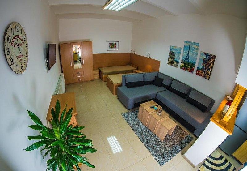 Apartments Pia - Apartment 1, holiday rental in Stara Moravica
