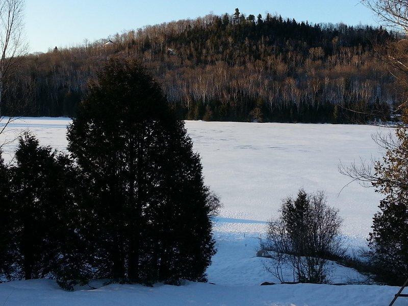 Winter time Beauty