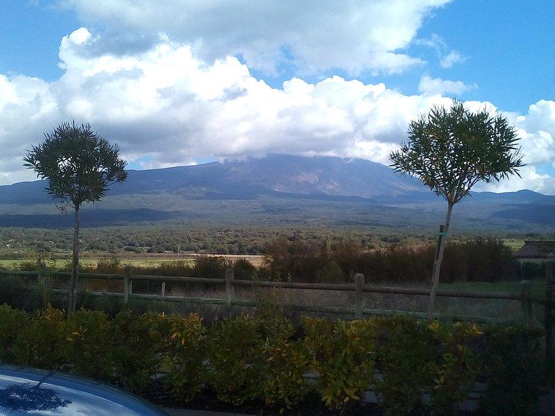 Casa vacanze Le Rose Dell' Etna, holiday rental in Trecastagni
