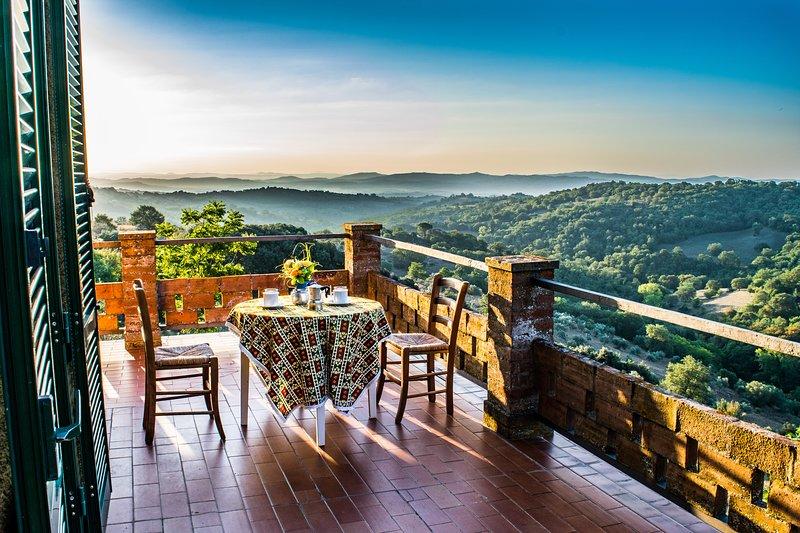 Podere IL LUOGO, Scansano, appartamento 1°piano: piscina, mare, terme, cultura.., holiday rental in Montorgiali
