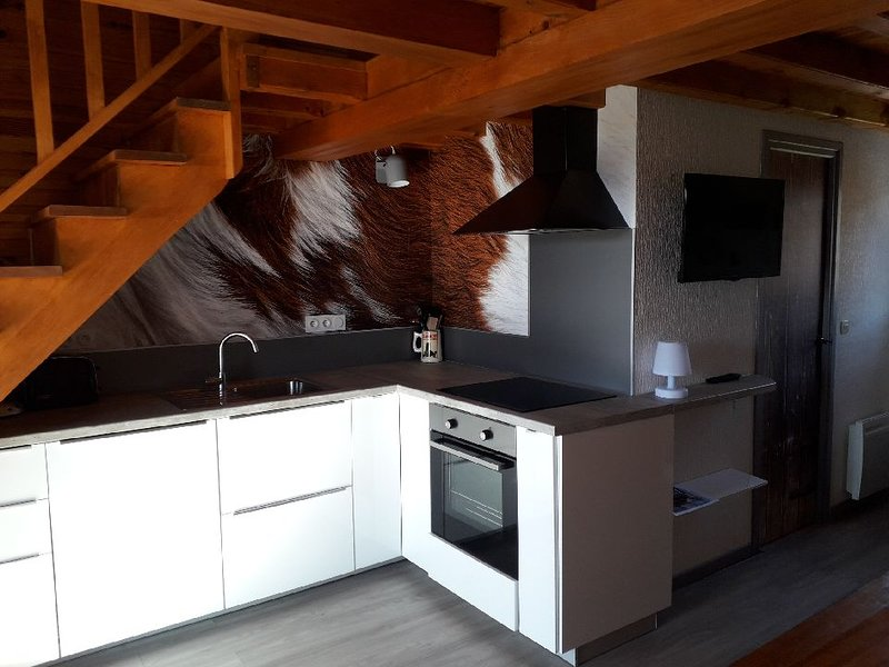 Chalet aux Angles au pied des pistes, holiday rental in Pyrenees-Orientales