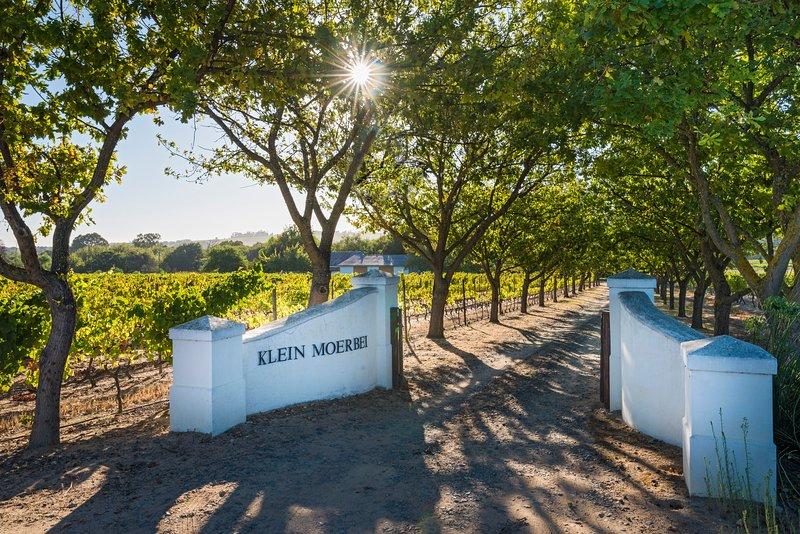 klein moerbei estate, casa vacanza a Stellenbosch