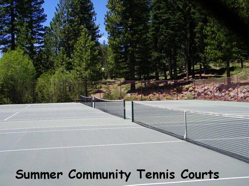 Cheyenne's Place - Campi da tennis kwc0854