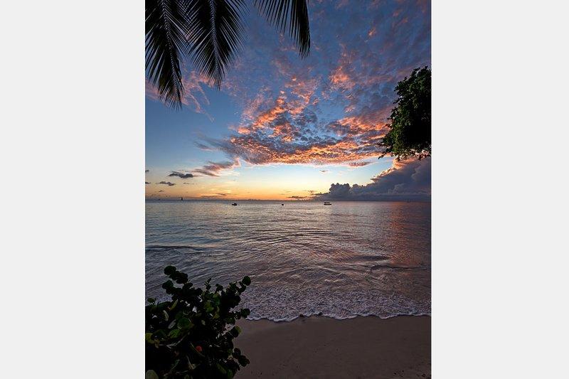 sunset-vert-extra.jpg