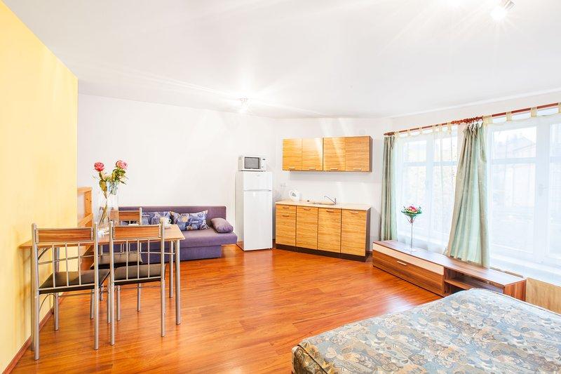 Maisonette Apartment - Prague center, location de vacances à Radonice
