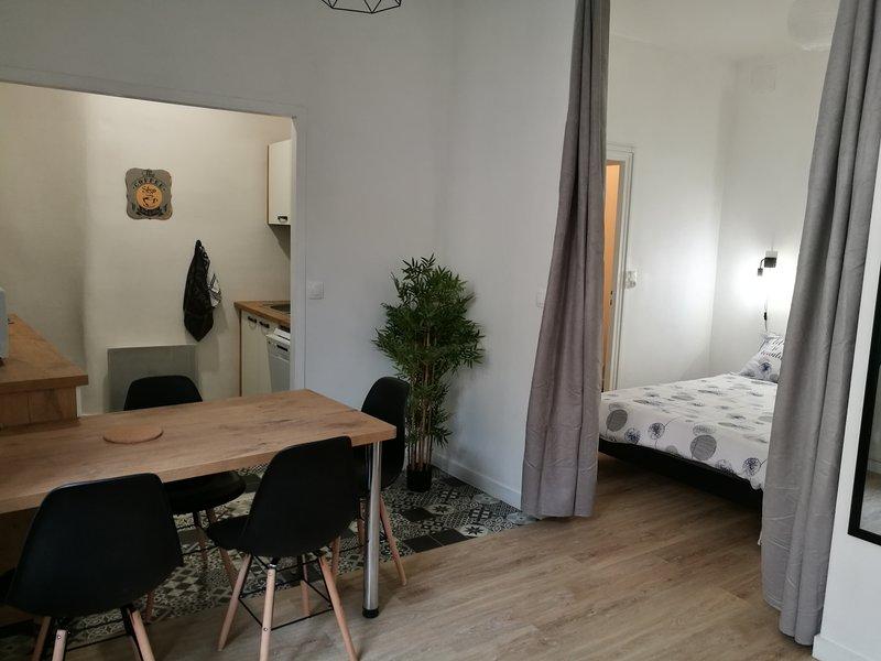 Appartement les Regrattiers, location de vacances à Poitiers