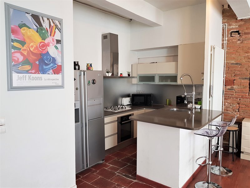 Art Deal Taur trois pieces, holiday rental in Toulouse