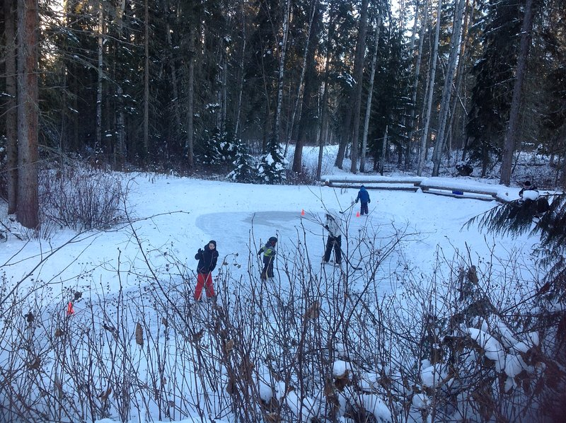 Our pond in the winter---just right for a hockey game