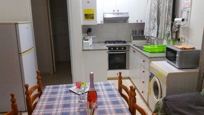 One bedroom Apartment near the sea 45 sq.meters- Astrofegia Apartment, holiday rental in Nea Dimmata