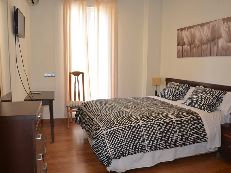 Comfortable and quiet apartment in downtown Madrid., vacation rental in Madrid