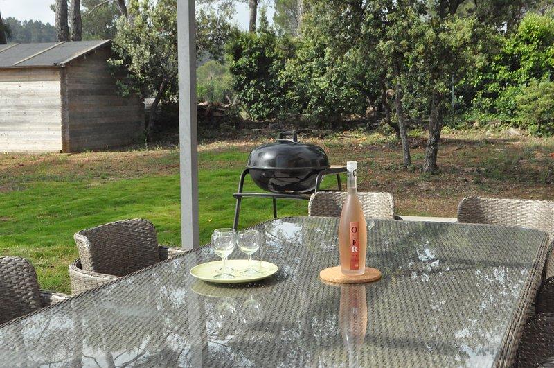 Dégustez un verre de vin avant votre barbecue